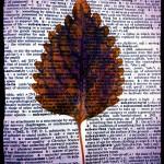 Leaf & Dictionary