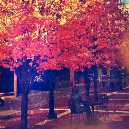Autumn in Ithaca by  Lloyd Doppler