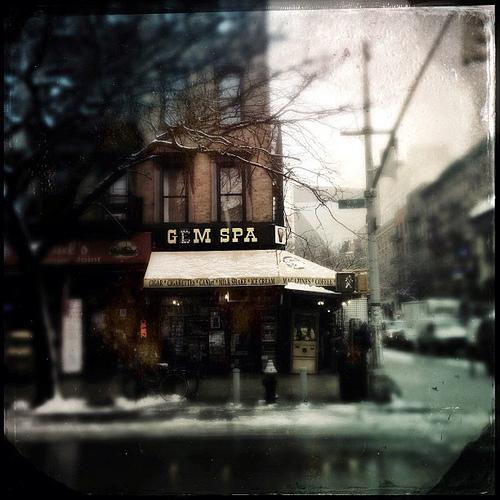 Gem Spa by Adam Lerner