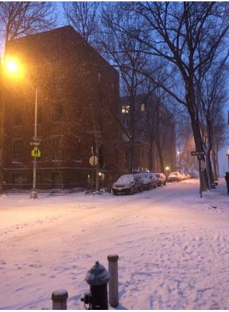 snow is falling nyc