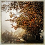 Early One October Morning by Nick Kenrick