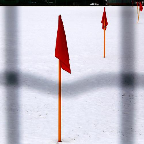 Little Red Flag by enki22