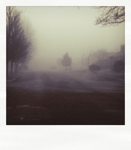 polaroid haunted street by sandi